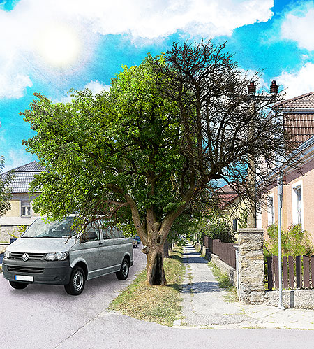 strom-vady2